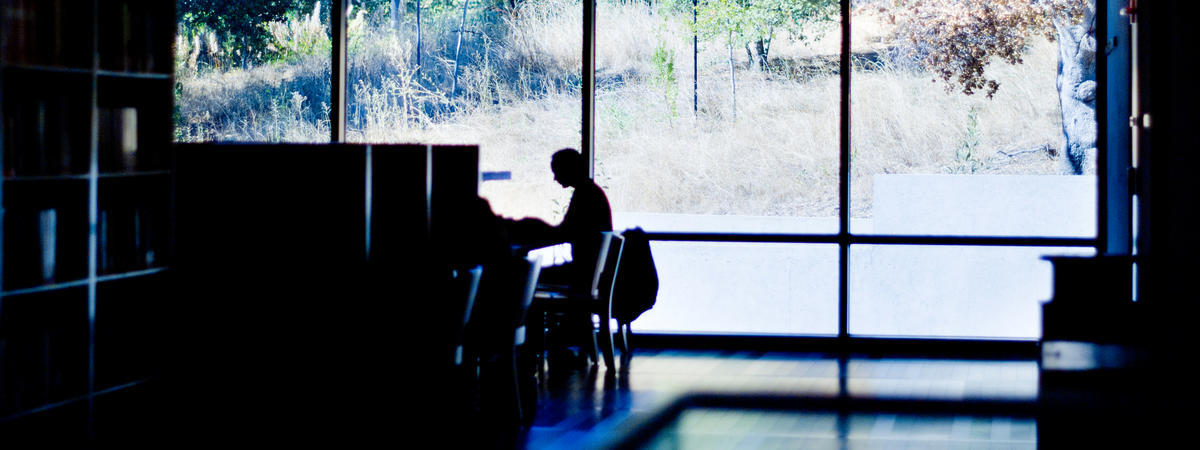 photo of the silhouette of a single, indistinguishable person in the library; background has view of surrounding wooded areas